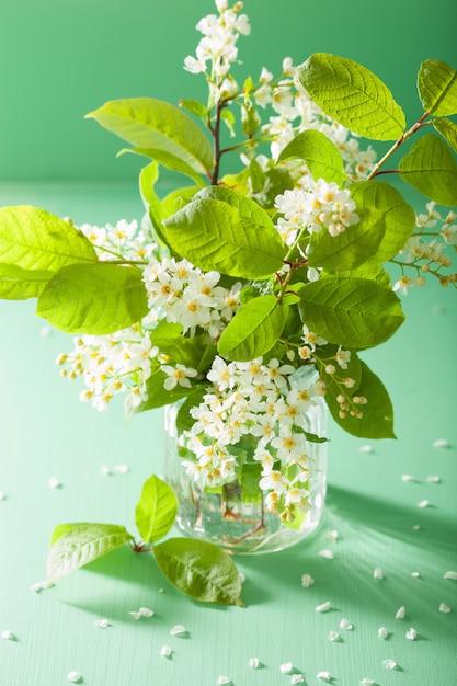 Черемуха в вазе на зеленом столе Premium Фотографии