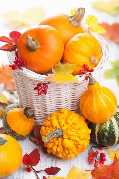 Осенние декоративные тыквы в корзине Premium Фотографии