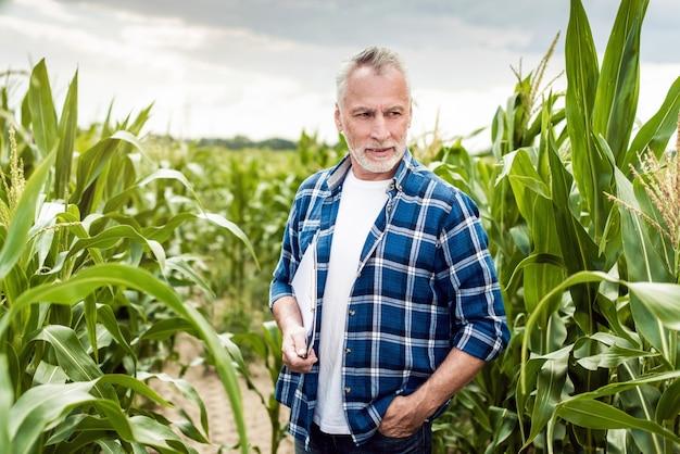 ドキュメントを保持しているトウモロコシ畑に立っている上級農学者の肖像画。 Premium写真