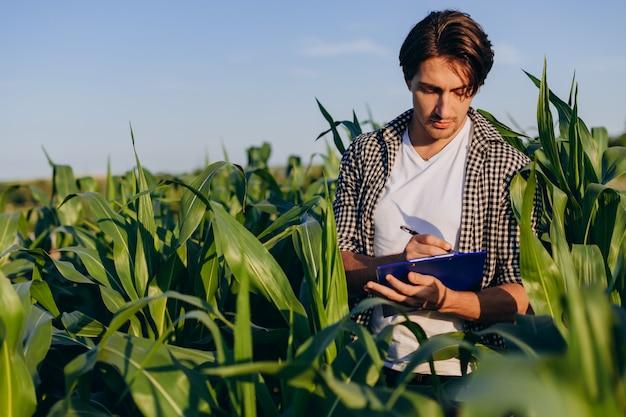 若い男農学者トウモロコシ畑に立っていると収量の管理 Premium写真
