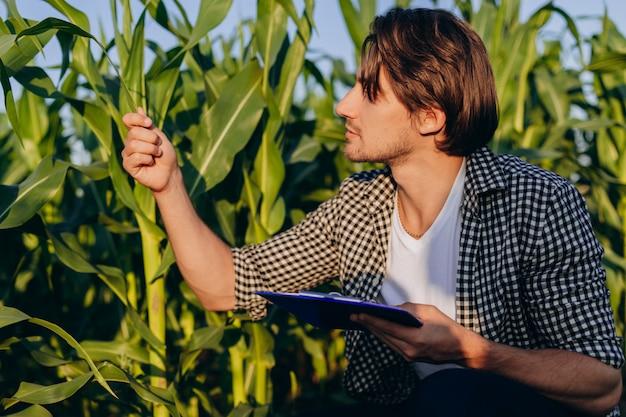 収量を管理し、植物を尊重する分野での農学者の肖像 Premium写真