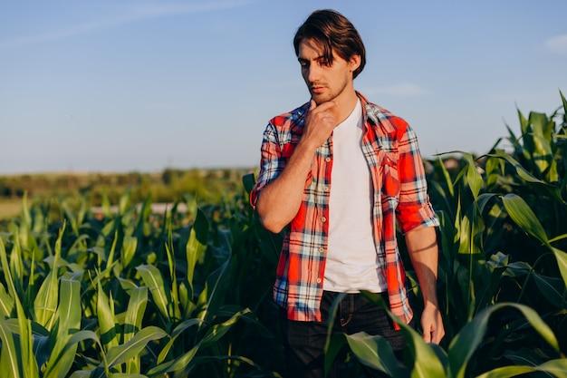 思慮深く農学者がトウモロコシ畑に立っていると彼のあごに触れるの肖像画。 Premium写真