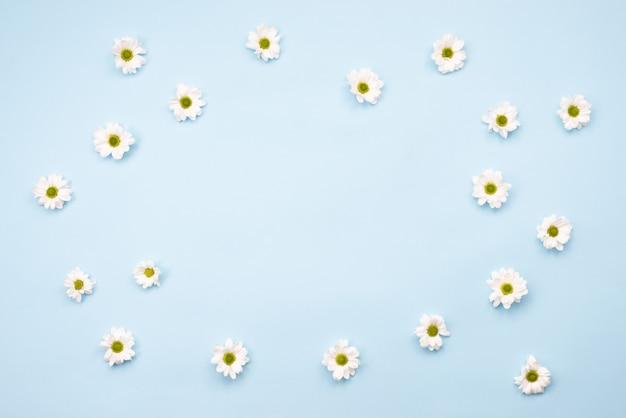 Рама изготовлена из свежих цветов ромашки на столе. скопируйте пространство, пустое на синем фоне Premium Фотографии