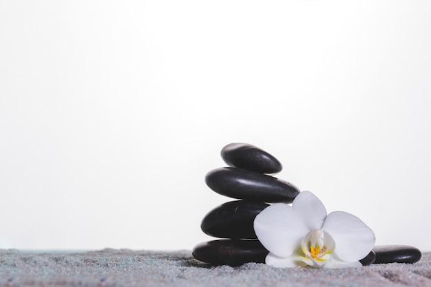 蘭とタオルの石 無料写真