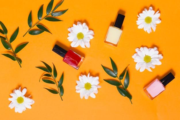 Ромашки и ветви возле ногтей Бесплатные Фотографии