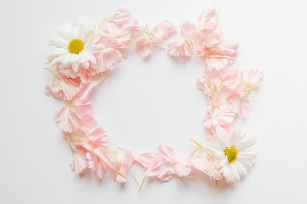 Кадр из цветочных лепестков и ромашек Бесплатные Фотографии