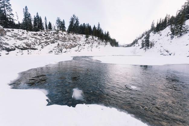 Озеро в заснеженном лесу Бесплатные Фотографии