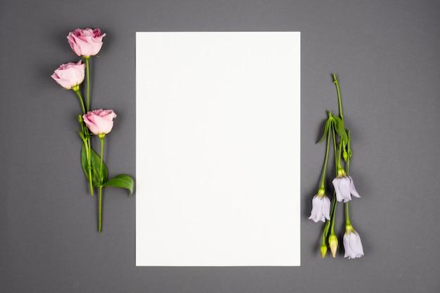 Наборы пастельных цветов, обрамляющих пустое пространство Бесплатные Фотографии