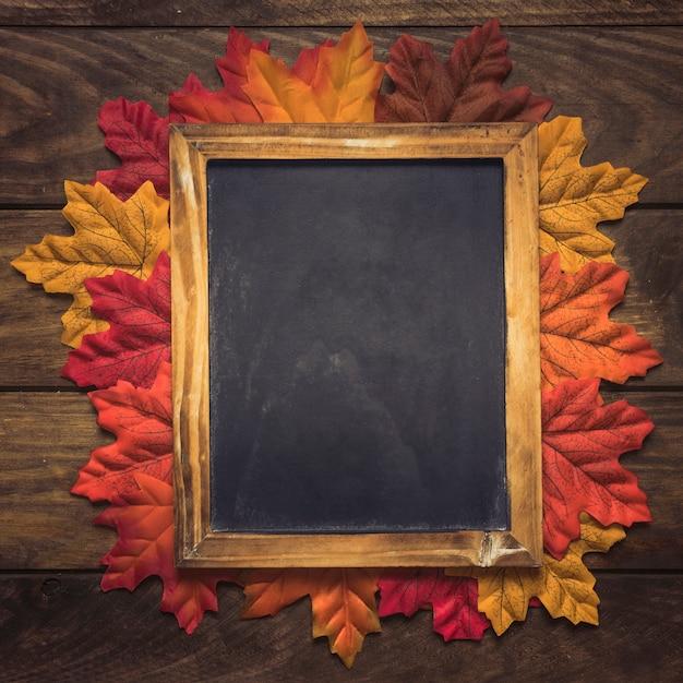 絶妙な空の黒板のフレーム秋の葉 無料写真