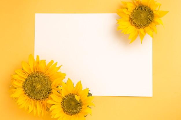 黄色の背景上の空白の白い紙にひまわり 無料写真
