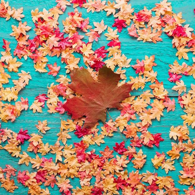 Композиция кленовых листьев на цветном деревянном фоне Бесплатные Фотографии
