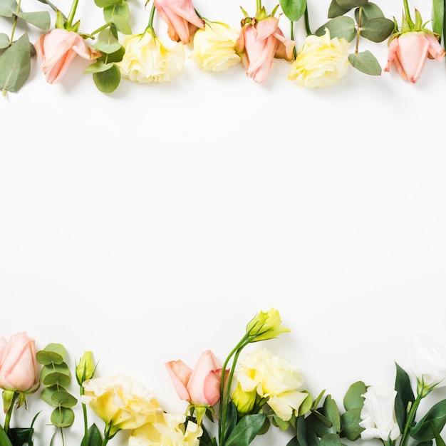 白い背景に花で作られた上部と下部の境界線 無料写真