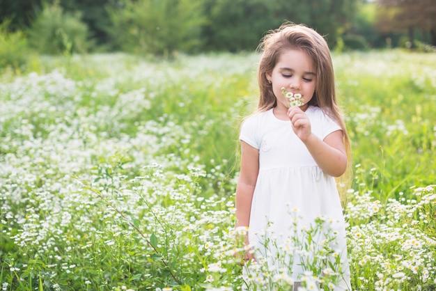 Маленькая милая девочка, пахнущая цветком в поле Бесплатные Фотографии