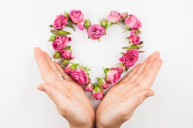 白い背景にピンクのバラのハート型を保護する手のクローズアップ 無料写真