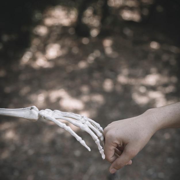 人間の拳をつなぐスケルトンの手 無料写真