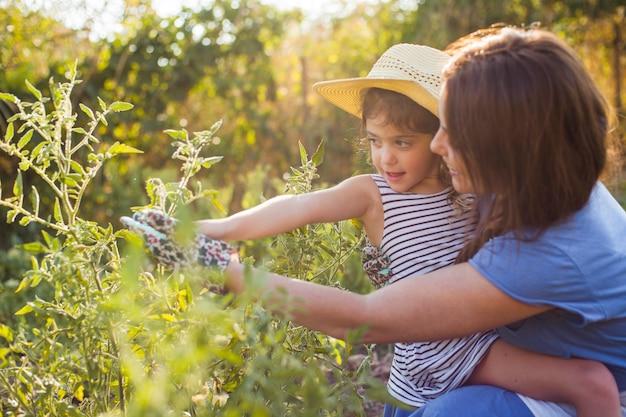 フィールドに植物を保持している彼女の娘を運ぶ母 無料写真