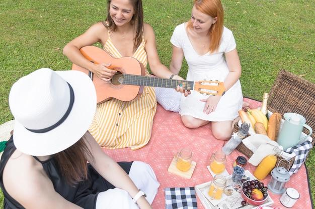 屋外のピクニックで楽しむ友人のオーバーヘッドビュー 無料写真