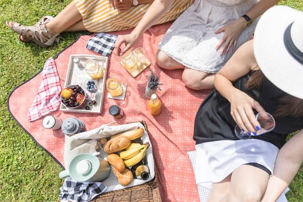 ピクニックで楽しむ女性の友人のオーバーヘッドビュー 無料写真