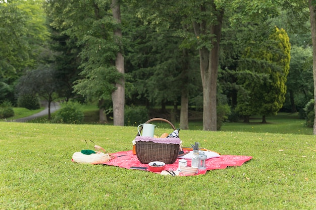 緑の芝生の上に毛布のピクニック設定 無料写真