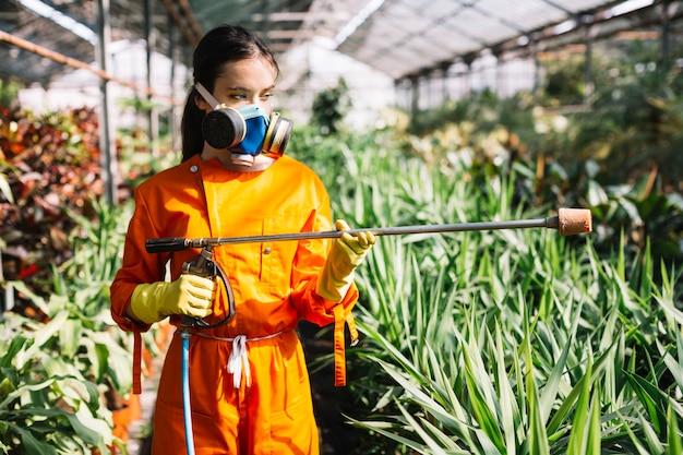 温室に立つ噴霧器を備えた女性の庭師 無料写真