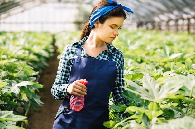 温室で植物を見てスプレーボトルを持つ女性 無料写真