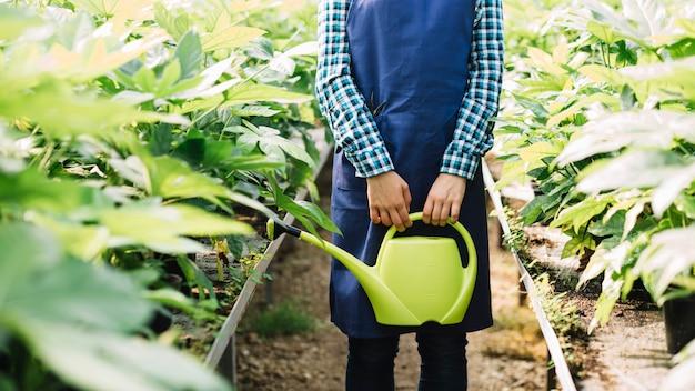 温室内で生育する新鮮な植物を用いて給水缶を保持する庭園の中央部分図 無料写真
