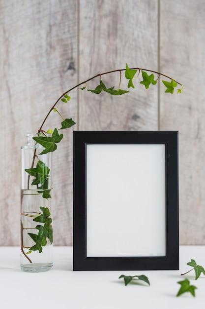 ガラスの花瓶のアイビー、壁の机の上にある白いフォトフレーム 無料写真