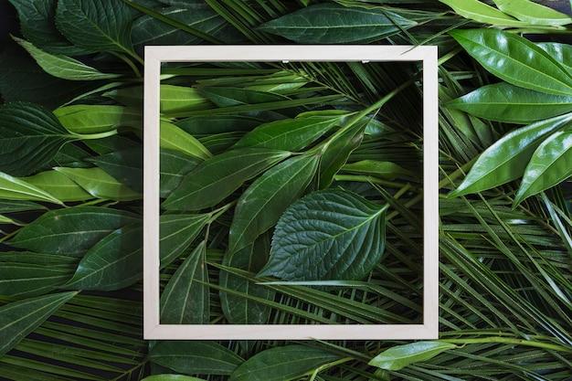 緑の葉の背景の上に木製の白いフレームの枠線 無料写真