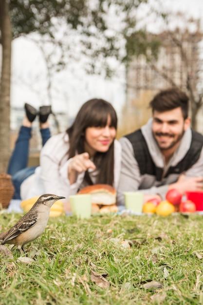 公園で緑の草の雀を見る若いカップルのクローズアップ 無料写真