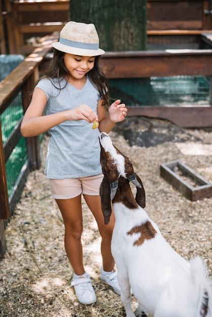 農場で山羊に笑顔でかわいい少女の肖像画 無料写真