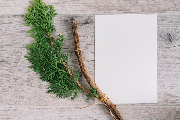 木製のテクスチャ付きの背景に空白の白い紙とシダーブランチ 無料写真
