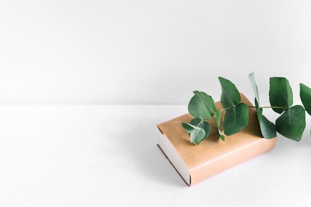 白い背景に閉じた茶色のカバーブックに緑の小枝 無料写真