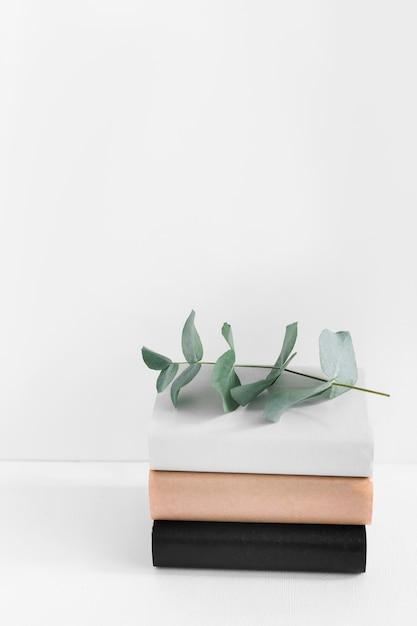 白い背景にある別の本のスタックに緑の小枝 無料写真