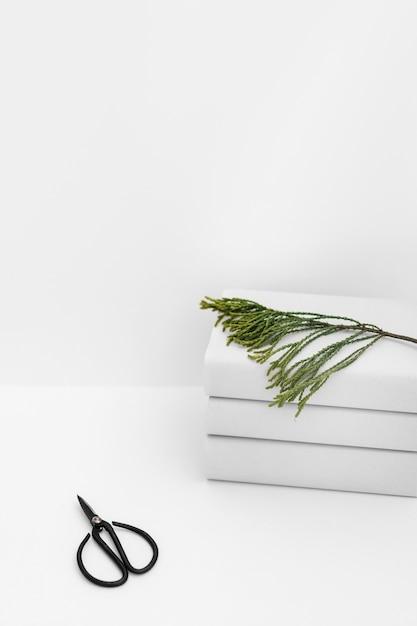 白い背景の白い本の積み重ねに杉の小枝を持つ黒のはさみ 無料写真