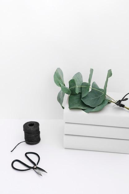 白い背景に黒いスプールとはさみで積み重なった本の枝 無料写真