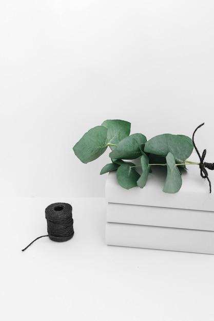 白の背景に黒いスプールで積まれた本の小枝 無料写真