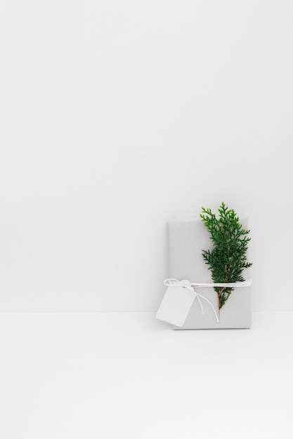 杉の小枝と白の背景に空白のタグで現在のラップ 無料写真