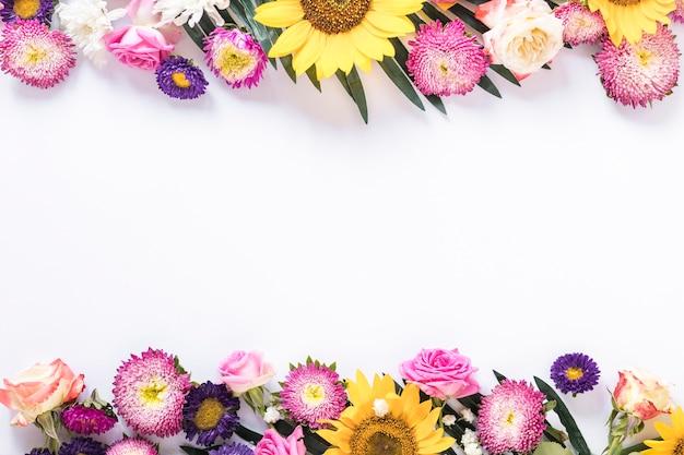 白い背景にカラフルな新鮮な花の高い角度のビュー 無料写真