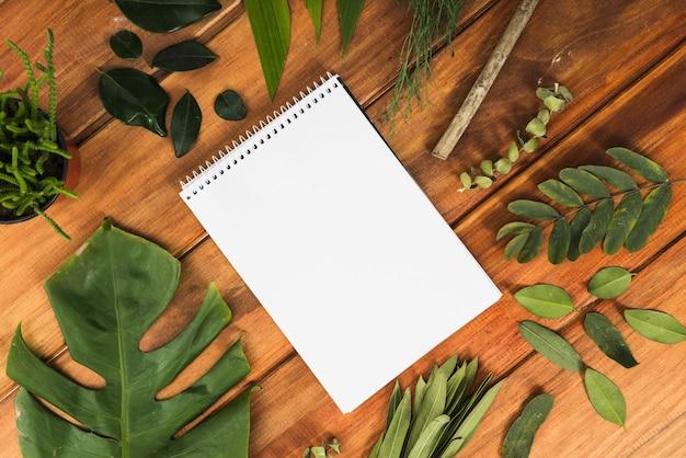 ノートブックとテーブルの葉 無料写真