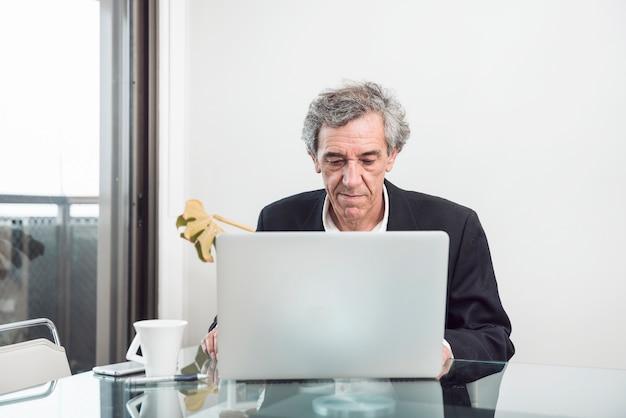 Старший бизнесмен, используя ноутбук в офисе Бесплатные Фотографии
