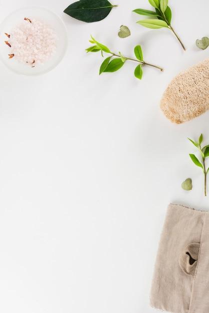 ハーブ塩のボウル;葉とスイカは、白い背景の上に孤立している 無料写真