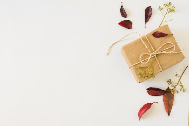 Осенние листья рядом с подарком Бесплатные Фотографии