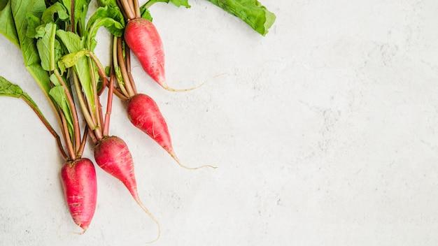 Повышенный вид свежей красной редиски на фоне мрамора на белом фоне Бесплатные Фотографии