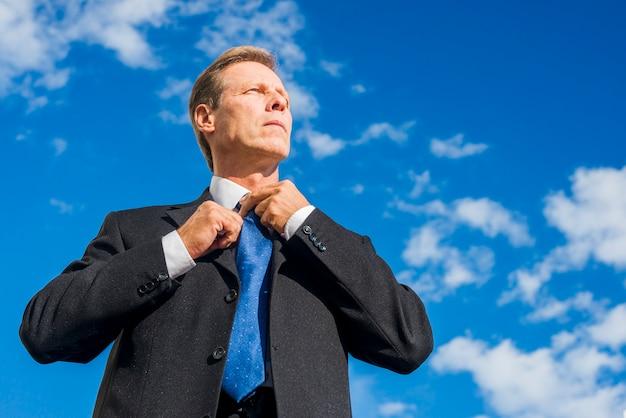 スカイブラックスーツで成熟したビジネスマンの低角度のビュー 無料写真