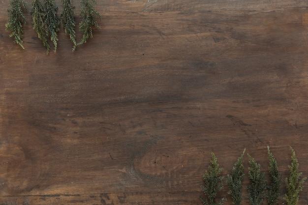 木製のテーブルの緑の枝 無料写真