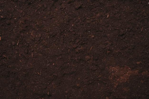 土壌テクスチャの背景 無料写真