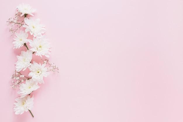 Фон цветы Бесплатные Фотографии