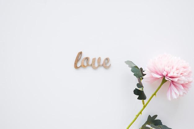 かわいい花の近くに小さな愛の書き込み 無料写真