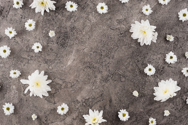 Цветы фон копией пространства Бесплатные Фотографии