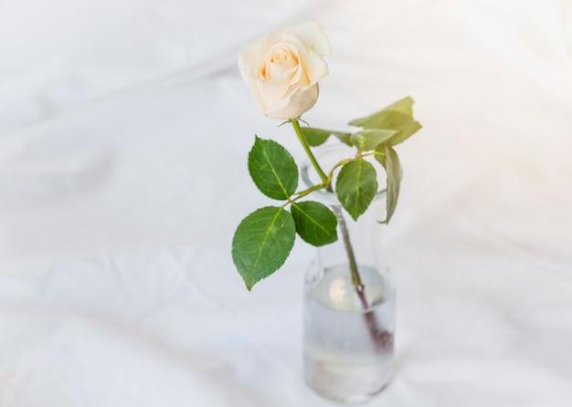 黄色、バラ、ガラス、花瓶、テーブル 無料写真